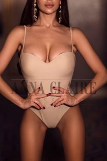 Berlin elite escort Amanda, luxury dinner date and social events companion