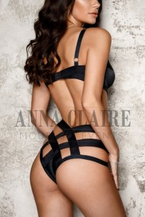 Elite Singapore escorts model Sarah, luxury dinner date and social companion